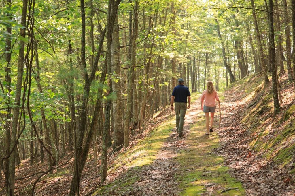 Hiking Shenandoah
